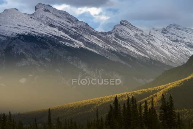 Paesaggio con montagne coperte di neve e il verde dei boschi — Foto stock