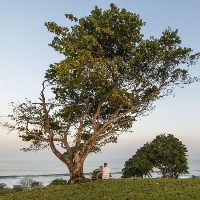 Man using digital tablet under tree — Stock Photo