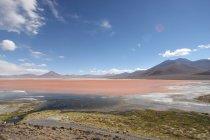 Горы и соленое озеро — стоковое фото