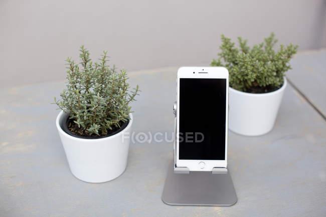 Smartphone und Topfpflanzen — Stockfoto