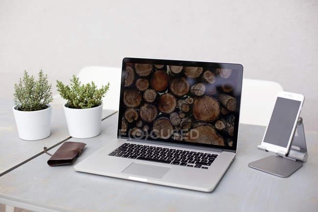 Ordinateur portable et plantes en pots sur le Bureau — Photo de stock