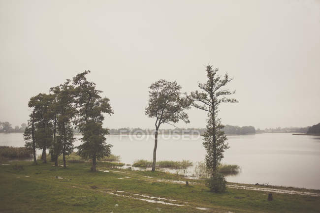 Landscape with lake and forest — Stock Photo