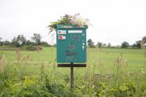 Mailbox and flowers in countryside — Stock Photo