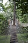 Дерев'яний catenary міст — стокове фото