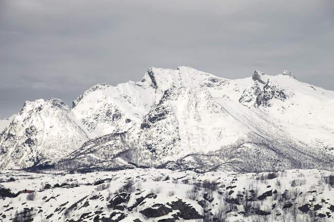 Vista delle montagne innevate — Foto stock