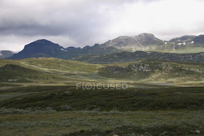 Vue de prairie dans les montagnes — Photo de stock