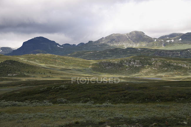 View of meadow in mountains — Stock Photo