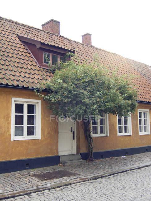Casa amarilla con árbol grande - foto de stock