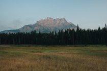 Vista diurna de montañas sobre bosques y prados - foto de stock