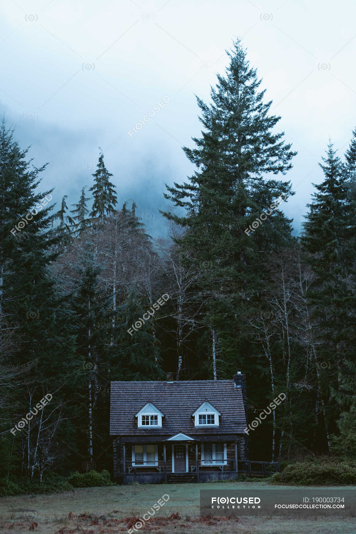 Daytime View Of Wooden House Near Forest Scenic Background Stock Photo 190003734