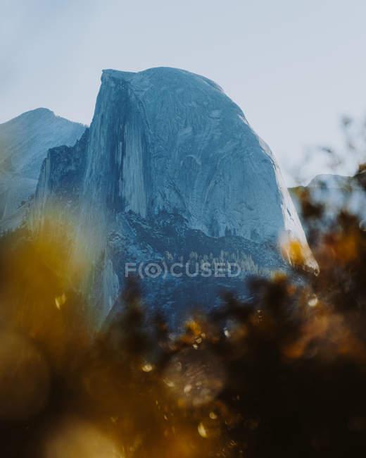 Vista diurna do Monte Half Dome e turva árvores, Parque Nacional de Yosemite, Califórnia — Fotografia de Stock