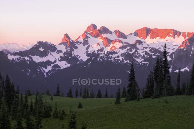 Vue à distance des montagnes allégée par le coucher du soleil, Parc National du Mont Rainier, Washington, é.-u. — Photo de stock