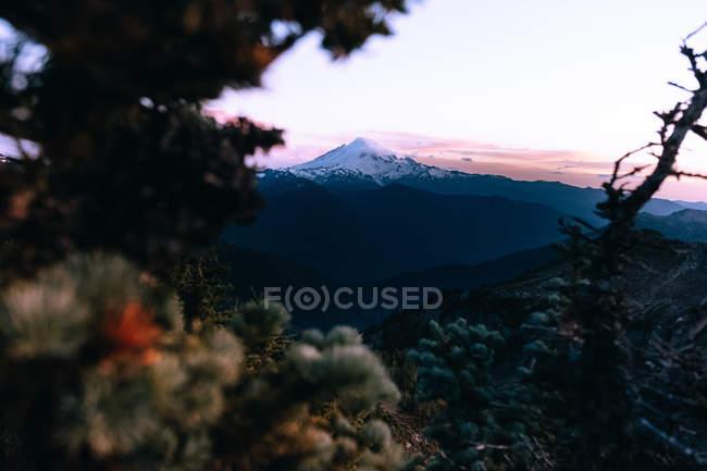 Далеких подання дерева і mountainscape в вінчестер гора сторожі, Північна каскадів, Вашингтон — стокове фото