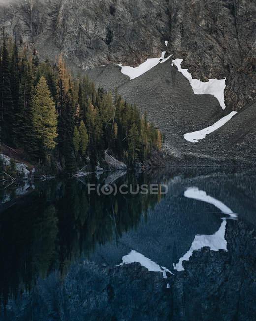 Денного зору ліс та гора, відображені в озеро поверхні — стокове фото