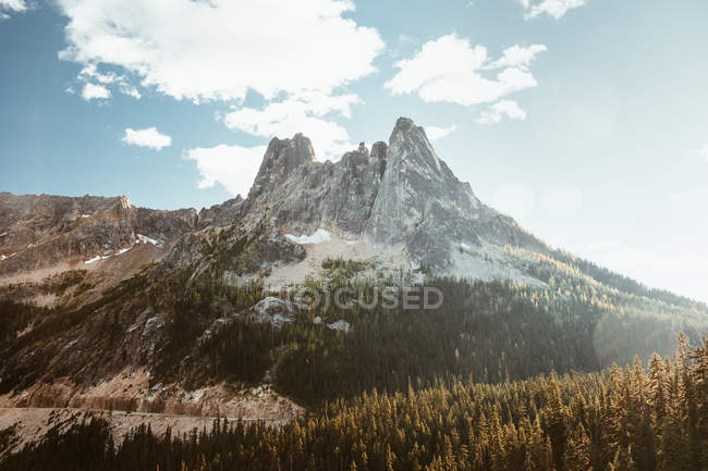 Daytime view of forest and Liberty Bell mountain, North Cascades, Washington — Stock Photo