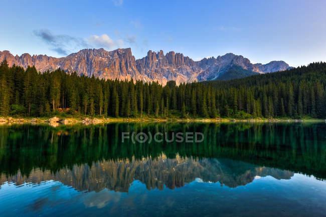 Pineta che si riflette nel lago — Foto stock