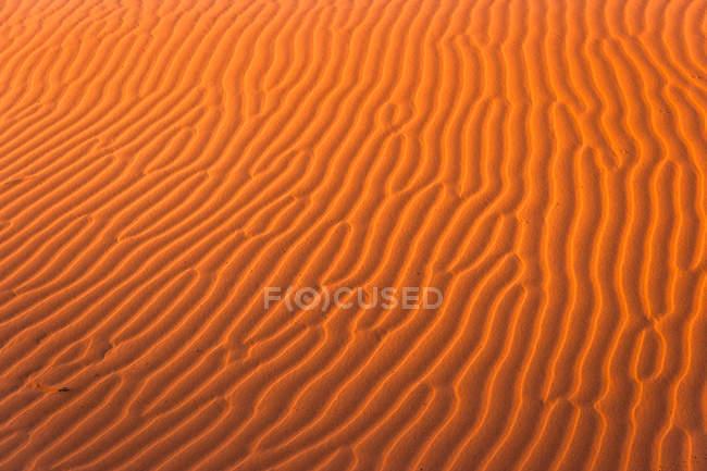 Sanddünen in der Sahara — Stockfoto