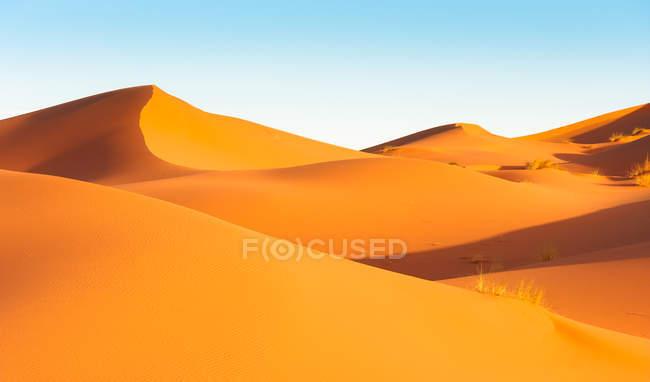 Dune di sabbia nel deserto del sahara — Foto stock