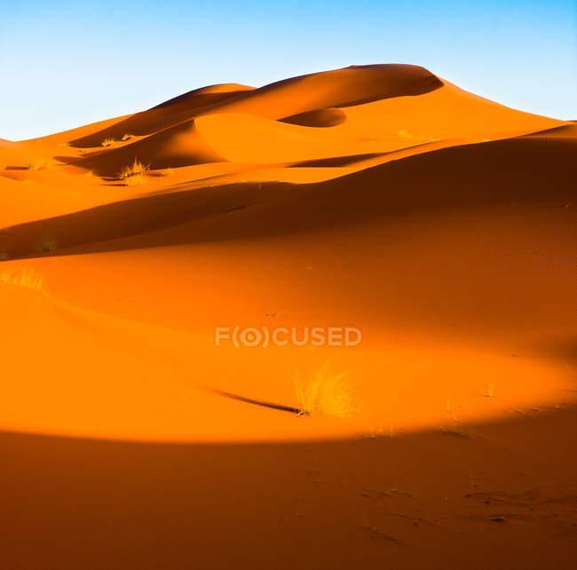 Піщані дюни в пустелі Сахара — стокове фото