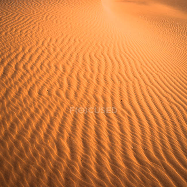 Dunes de sable dans le désert du sahara — Photo de stock