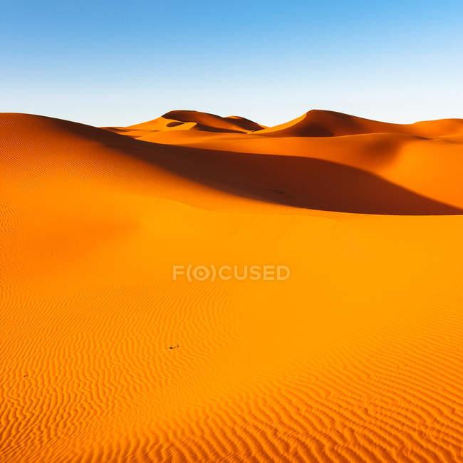 Dunas de areia no deserto do Saara — Fotografia de Stock