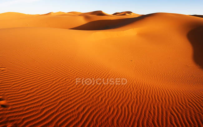 Песчаные дюны в пустыне Сахара — стоковое фото