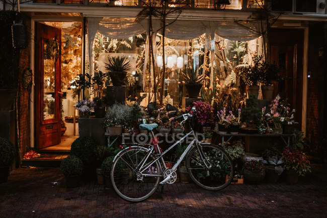 Evening scene with typical dutch architecture and bicycle parked by flower shop entrance, Amsterdam, Netherlands — Stock Photo