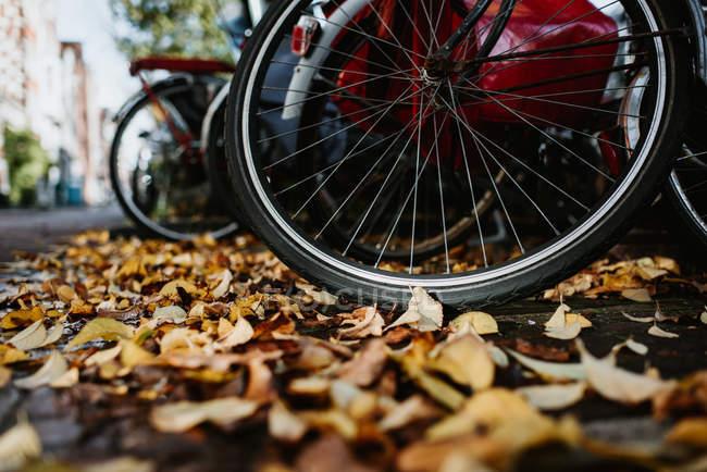 Крупним планом подання vintage велосипеди деталей і жовтий осіннього листя на землі — стокове фото