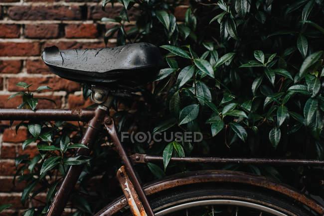 Крупним планом вид Vintage деталі велосипеда — стокове фото
