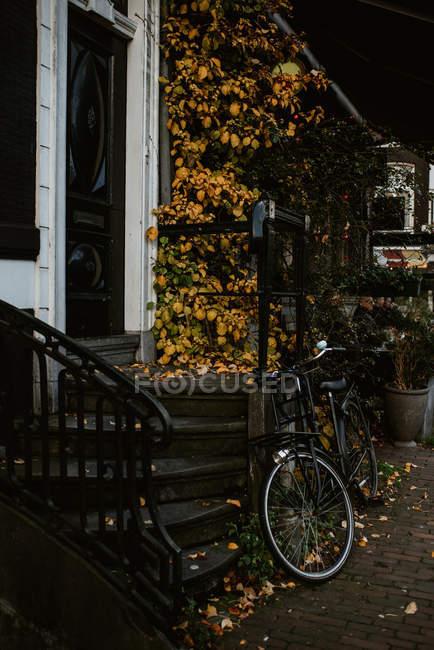Cena outonal com arquitetura típica holandesa e bicicleta estacionada à entrada da casa, Amsterdã, Holanda — Fotografia de Stock