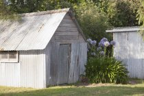 Backyard shed exterior with flowers beside — Stock Photo