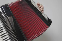 Crop man playing accordion over white wall background — Stock Photo