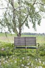 A wooden bench in countryside field — Stock Photo