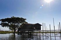 Stelzenhaus mit Baum vor blauem Himmel, inle lake, burma — Stockfoto