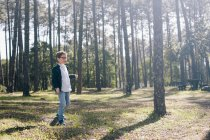 Curious boy walking in sunny forest — Stock Photo