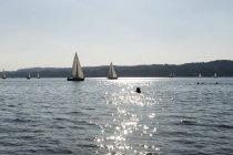 Силуэт пловцов и парусников в озере в солнечный день — стоковое фото