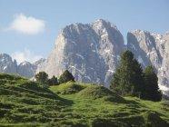 Vista panorámica de colinas verdes sobre los picos de las montañas nubladas - foto de stock