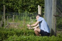 Young man checking plants while sitting in park — Stock Photo