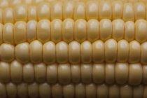 Full frame shot of corn on cob — Stock Photo