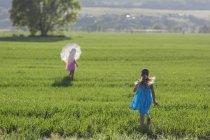 Vue arrière de fille courir pour rattraper la jumelle dans domaine ensoleillé — Photo de stock