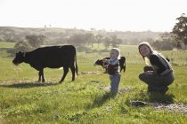 Mother with baby boy playing on field with cows on background — Stock Photo