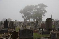 View to tombstones at misty cemetery — Stock Photo