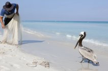 Pelican in front of fisherman with nets at seashore — Stock Photo