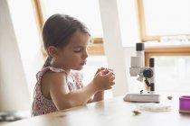 Chica curiosa mirando el espécimen con microscopio en la mesa en casa - foto de stock