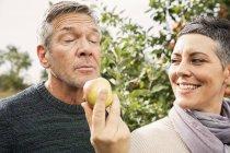 Donna che tiene la mela per l'uomo nel frutteto — Foto stock