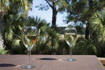 Dois copos de vinho branco na mesa ao ar livre — Fotografia de Stock