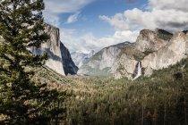 Мальовничим видом дерев, що виростають проти Скелясті гори, Національний парк Йосеміті, Каліфорнія, США — стокове фото