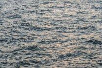 Полный кадр выстрел рифленая моря во время заката — стоковое фото