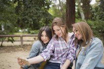Female friends taking selfie with smartphone in park — Stock Photo