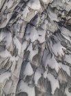 Colpo di telaio completo di tela cerata tela nella neve — Foto stock